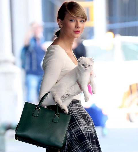 Cat Ladies: Taylor Swift with her hat Olivia Benson