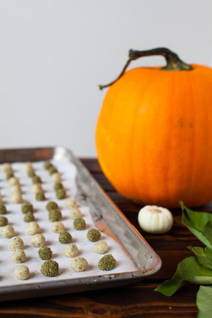 pumpkin-kitty-treat-just-treats