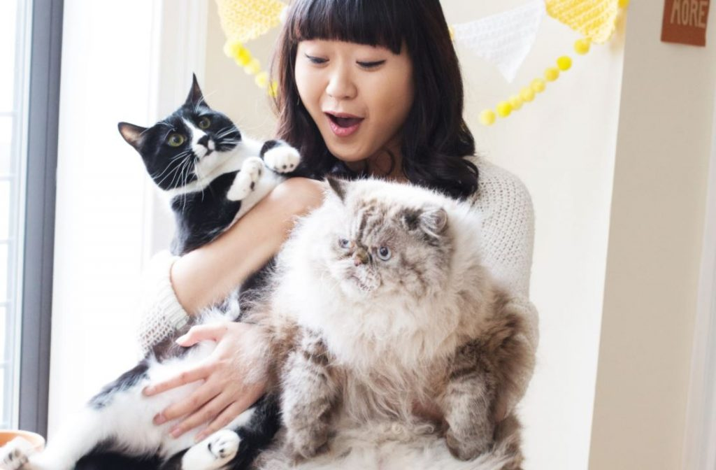 Meet cat lady Jen Hsieh and her cats, Bubba and Jeff Goldblum