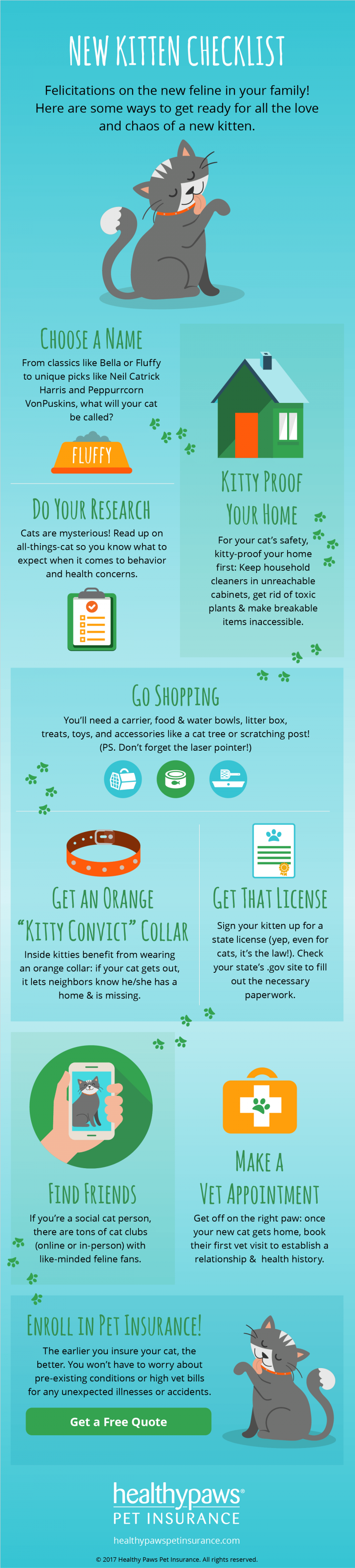 Infographic - new kitten checklist