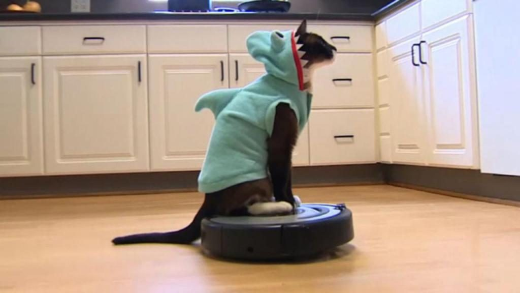 Robot Vacuums for Homes With Cats